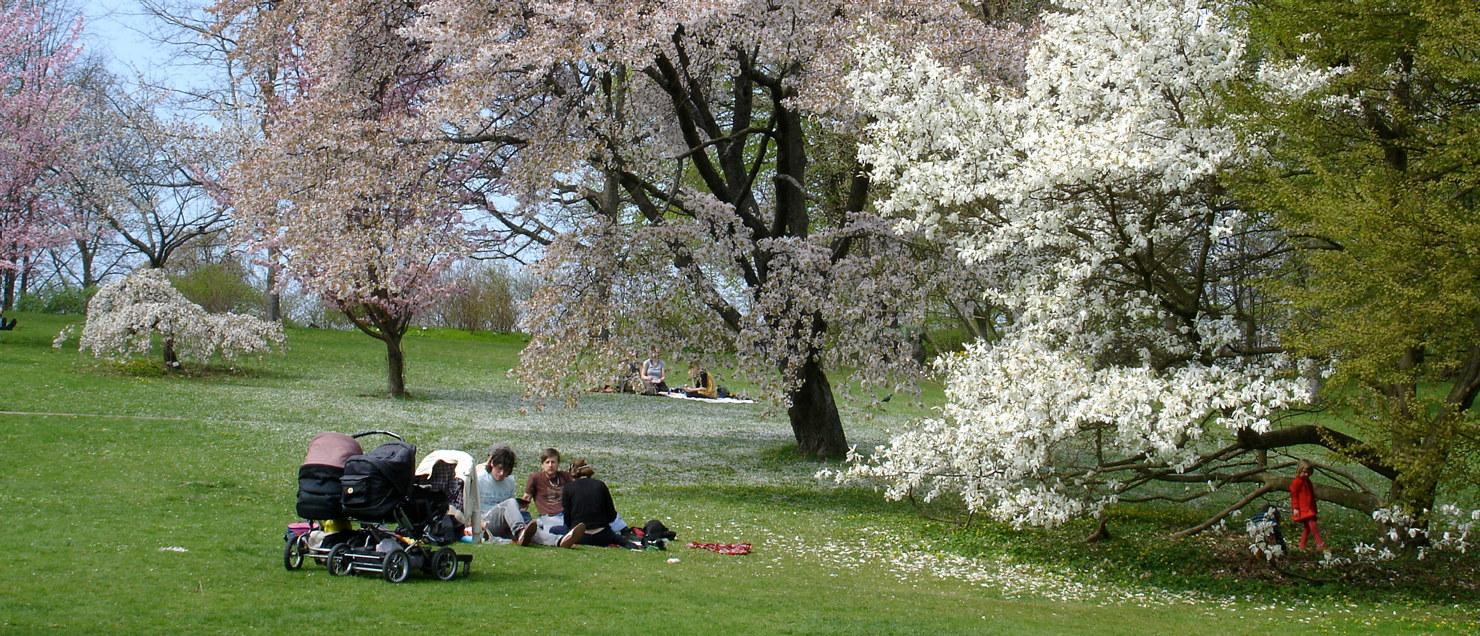 Besok Oss Goteborgs Botaniska Tradgard